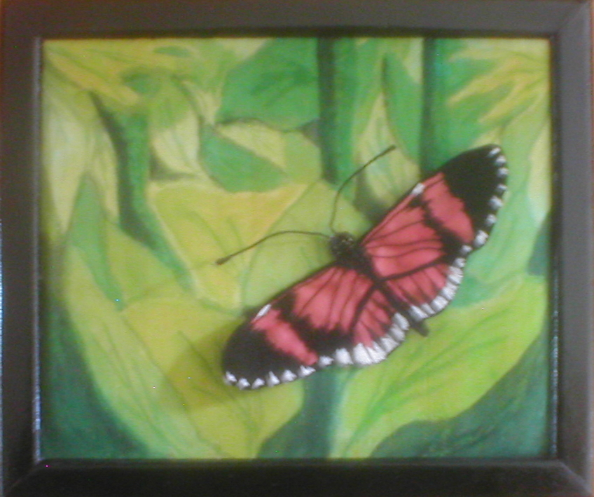 butterfly on painted background